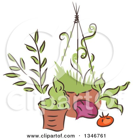 Clipart of a Sketched Garden Pot, Hanging Basket, Beet and Tomato - Royalty Free Vector Illustration by BNP Design Studio