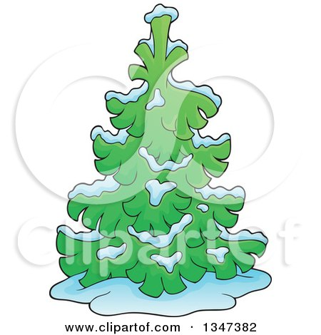 Clipart Of A Cartoon Snow Flocked Undecorated Evergreen Christmas Tree Royalty Free Vector Illustration