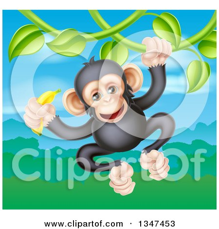 Clipart of a Happy Chimpanzee Monkey Holding a Banana and Swinging from a Jungle Vine over a Valley - Royalty Free Vector Illustration by AtStockIllustration