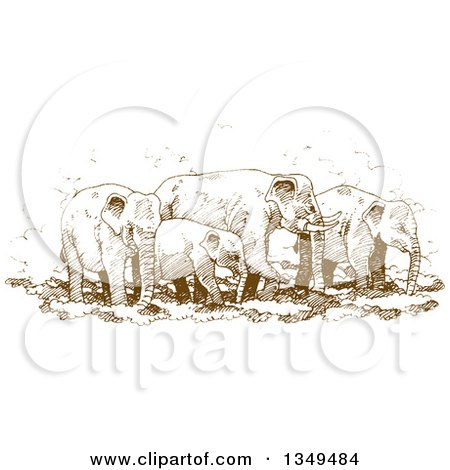 Clipart of a Brown Sketched Hand Drawn Herd of Elephants - Royalty Free Vector Illustration by Lal Perera
