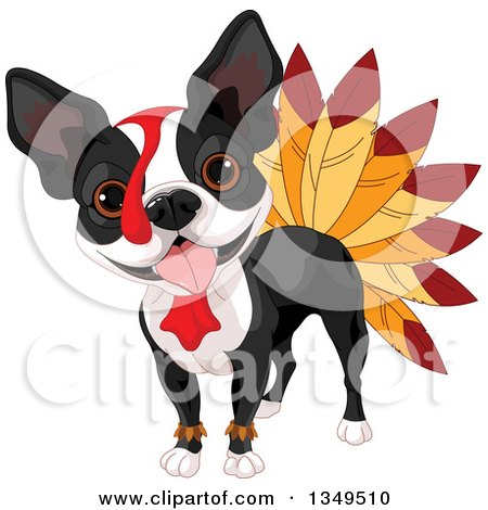 Clipart of a Thanksgiving Boston Terrier Dog Dressed As a Turkey - Royalty Free Vector Illustration by Pushkin