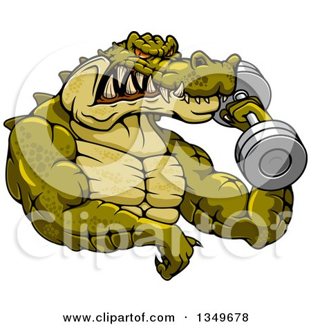 Clipart of a Cartoon Tough Muscular Crocodile Bodybuilder Doing Bicep Curls with a Dumbbell - Royalty Free Vector Illustration by Vector Tradition SM