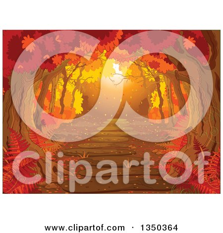 Clipart Of A Golden Sunset Lit Path Through An Autumn Forest Royalty Free Vector Illustration