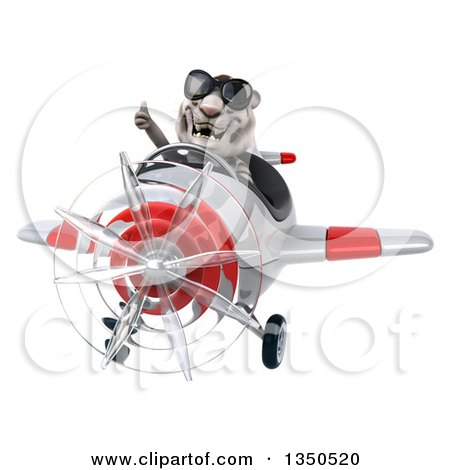 Clipart of a 3d White Tiger Aviator Pilot Wearing Sunglasses, Giving a Thumb up and Flying a White and Red Airplane - Royalty Free Illustration by Julos