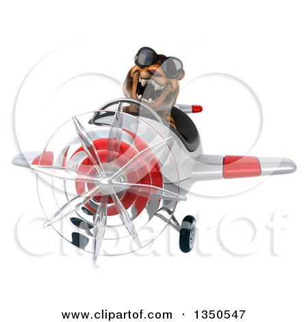 Clipart of a 3d Tiger Aviator Pilot Wearing Sunglasses and Flying a White and Red Airplane - Royalty Free Illustration by Julos