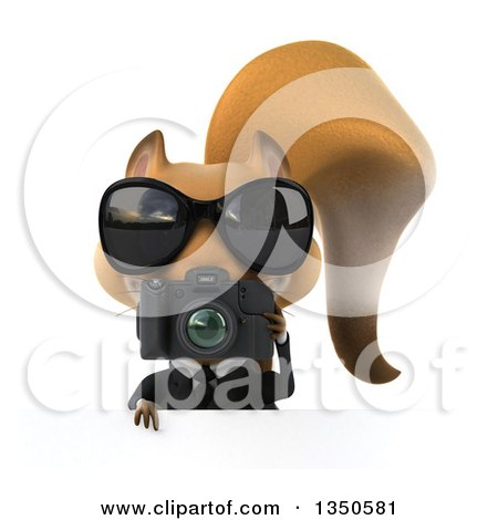 Clipart of a 3d Business Squirrel Wearing Sunglasses and Holding a Camera over a Sign - Royalty Free Illustration by Julos