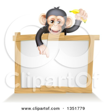 Clipart of a Cartoon Black and Tan Happy Baby Chimpanzee Monkey Holding a Banana and Pointing down over a Blank White Sign Framed in Wood - Royalty Free Vector Illustration by AtStockIllustration