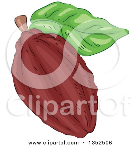 Clipart of a Sketched Cocoa Bean and Leaf - Royalty Free Vector Illustration by BNP Design Studio
