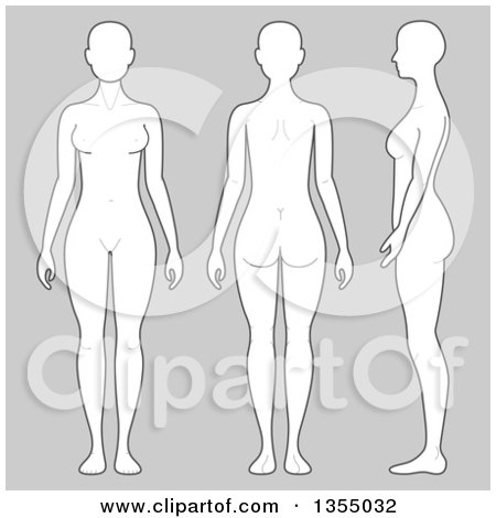 Clipart of a Woman's Body Shown in Three Angles over Gray ...