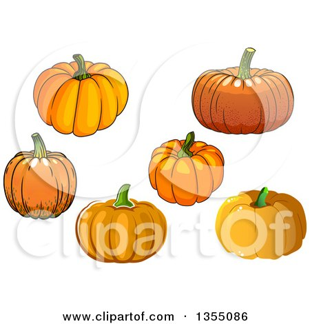 Clipart of Pumpkins - Royalty Free Vector Illustration by Vector Tradition SM