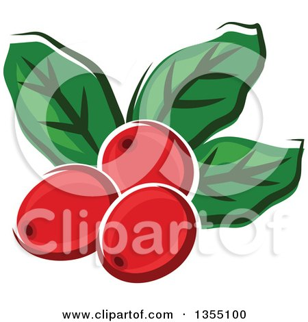 Clipart of Cartoon Arabica Coffee Berries and Leaves - Royalty Free Vector Illustration by Vector Tradition SM