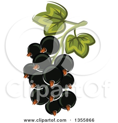 Clipart of a Cartoon Black Currants - Royalty Free Vector Illustration by Vector Tradition SM