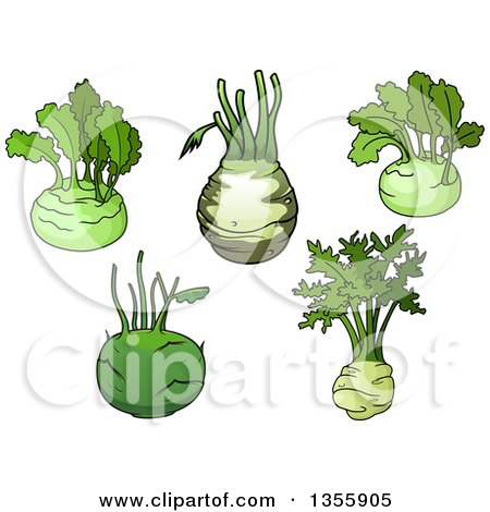 Clipart of Cartoon Kohlrabis - Royalty Free Vector Illustration by Vector Tradition SM