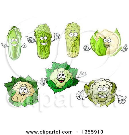 Clipart of Cartoon Cabbage and Cauliflower Characters - Royalty Free Vector Illustration by Vector Tradition SM
