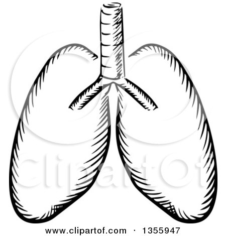 Royalty-Free (RF) Lung Clipart, Illustrations, Vector Graphics #1