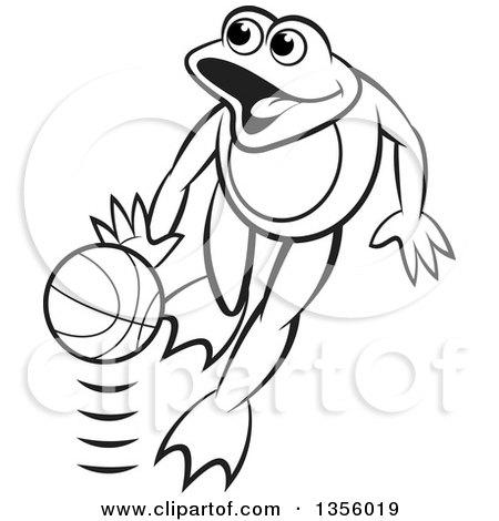Url Code Basketball