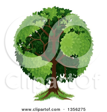 Clipart of a Mature Tree with Planet Earth Shaped Continents - Royalty Free Vector Illustration by AtStockIllustration