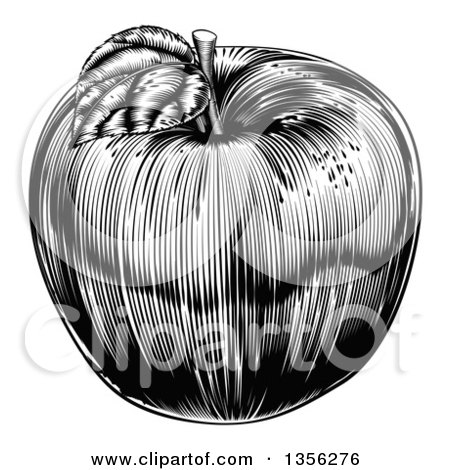 Clipart of a Black and White Vintage Woodcut Apple - Royalty Free Vector Illustration by AtStockIllustration