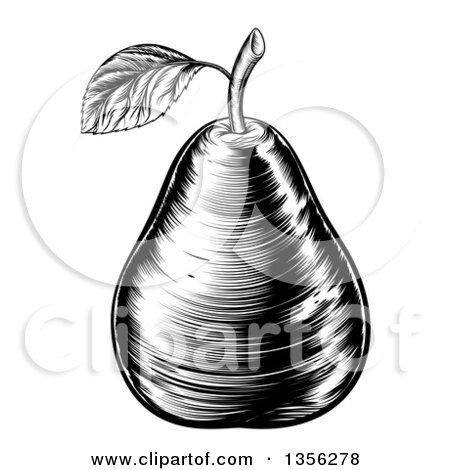 Clipart of a Black and White Vintage Woodcut Pear - Royalty Free Vector Illustration by AtStockIllustration