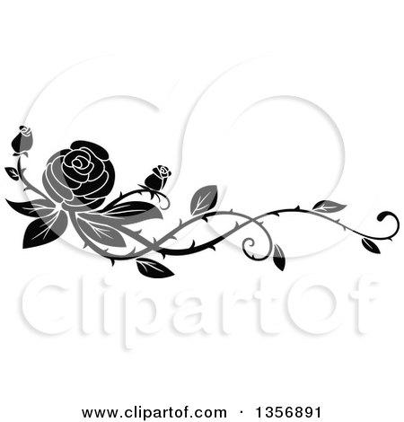Black And White Floral Rose Vine Border Design Element Posters