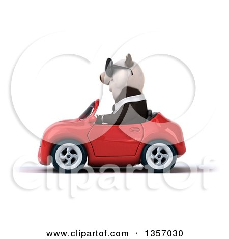 Clipart of a 3d Business Panda Wearing Sunglasses and Driving a Red Convertible Car, on a White Background - Royalty Free Illustration by Julos
