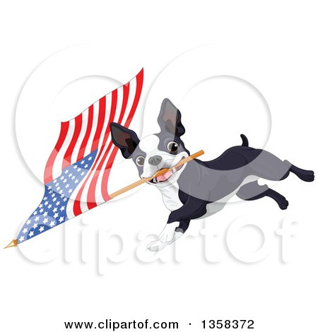 Clipart of a Cute Boston Terrier Dog Running with an American Flag - Royalty Free Vector Illustration by Pushkin
