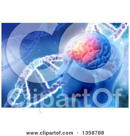 Clipart of a 3d Man's Head with Visible Glowing Brain over DNA Strands on Blue - Royalty Free Illustration by KJ Pargeter