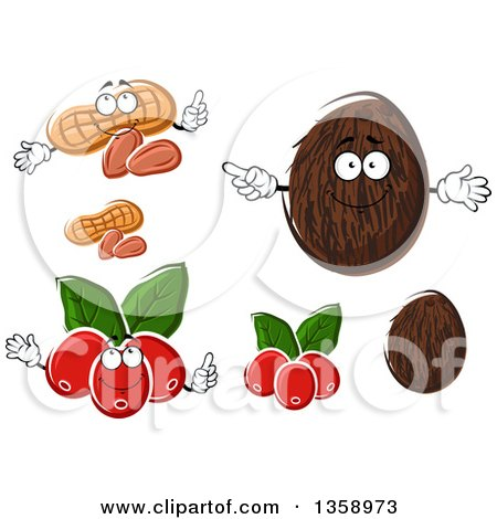 Clipart of Peanuts, Coconuts and Coffee Berries - Royalty Free Vector Illustration by Vector Tradition SM