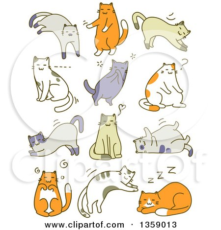 Clipart of Sketched Cats in Different Poses - Royalty Free Vector Illustration by BNP Design Studio
