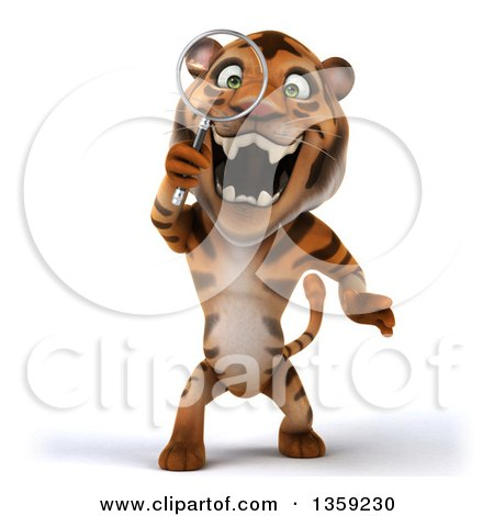 Clipart of a 3d Tiger Searching with a Magnifying Glass, on a White Background - Royalty Free Illustration by Julos