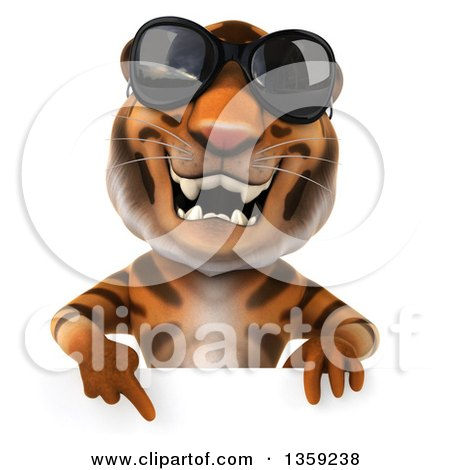 Clipart of a 3d Tiger Wearing Sunglasses and Pointing down over a Sign, on a White Background - Royalty Free Illustration by Julos