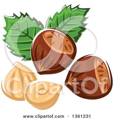 Clipart of Cartoon Hazelnuts and Leaves - Royalty Free Vector Illustration by Vector Tradition SM