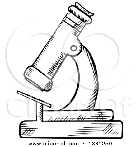 Clipart Of A Black And White Sketched Microscope