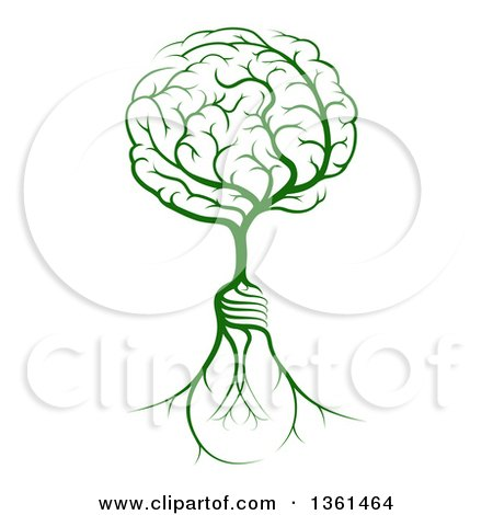 Clipart of a Green Tree with Light Bulb Roots and a Brain Canopy - Royalty Free Vector Illustration by AtStockIllustration