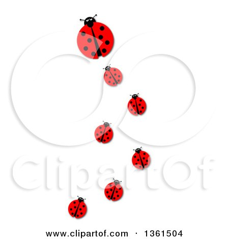 Clipart of a Big Ladybug and Trail of Followers, on a White Background - Royalty Free Illustration by oboy