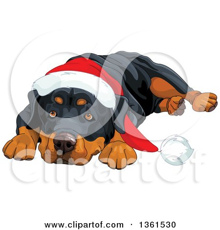 Clipart Of A Cute Rottweiler Dog Resting His Head Between His Paws