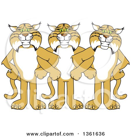 Clipart of Bobcat School Mascot Characters Standing with Linked Arms, Symbolizing Loyalty - Royalty Free Vector Illustration by Toons4Biz