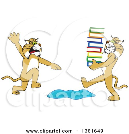 Clipart of a Bobcat School Mascot Character Warning Another That Is Carrying a Stack of Books About a Puddle, Symbolizing Being Proactive - Royalty Free Vector Illustration by Toons4Biz