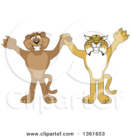 Clipart of Bobcat and Cougar School Mascot Characters Holding Hands and Cheering, Symbolizing Teamwork and Sportsmanship - Royalty Free Vector Illustration by Toons4Biz