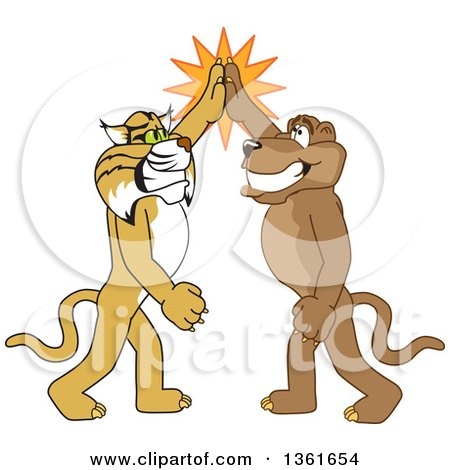 Clipart of Bobcat and Cougar School Mascot Characters High Fiving, Symbolizing Teamwork and Sportsmanship - Royalty Free Vector Illustration by Toons4Biz