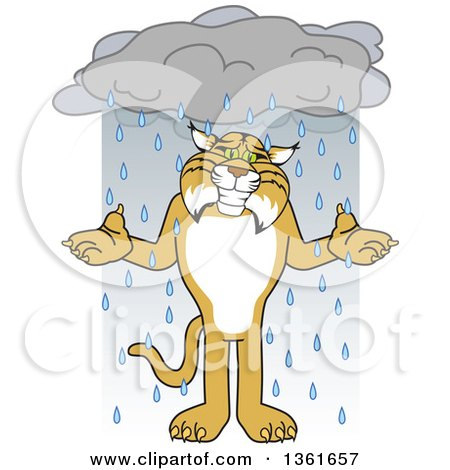 Clipart of a Bobcat School Mascot Character Shrugging in the Rain, Symbolizing Acceptance - Royalty Free Vector Illustration by Toons4Biz