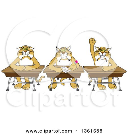 Clipart of Bobcat School Mascot Characters Sitting at Desks, One Raising His Hand, Symbolizing Respect - Royalty Free Vector Illustration by Toons4Biz
