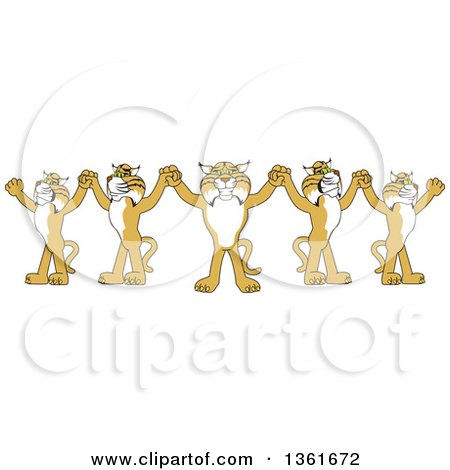 Clipart of a Team of Bobcat School Mascot Characters Holding Hands, Symbolizing Leadership - Royalty Free Vector Illustration by Toons4Biz