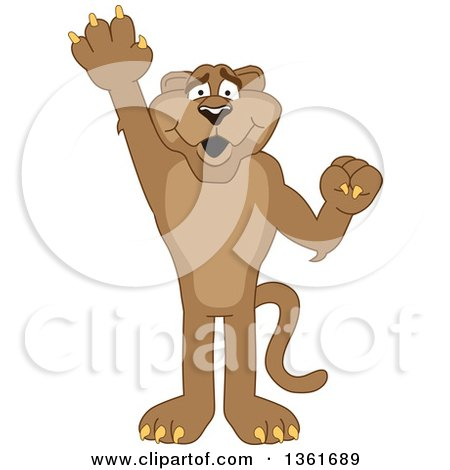 Clipart of a Cougar School Mascot Character Raising a Hand to Volunteer or Lead, Symbolizing Responsibility - Royalty Free Vector Illustration by Toons4Biz