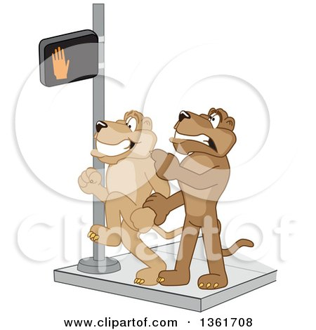 Clipart of a Cougar School Mascot Character Stopping Another from Using a Crosswalk at the Wrong Time, Symbolizing Safety - Royalty Free Vector Illustration by Toons4Biz