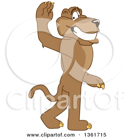 Clipart of a Cougar School Mascot Character Gesturing for You to Follow, Symbolizing Leadership - Royalty Free Vector Illustration by Toons4Biz
