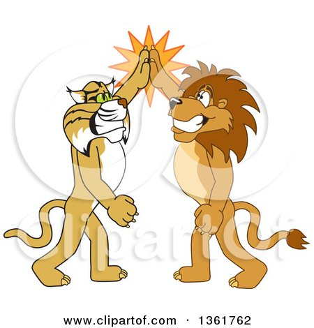 Clipart of Lion and Bobcat School Mascot Characters High Fiving, Symbolizing Sportsmanship - Royalty Free Vector Illustration by Toons4Biz