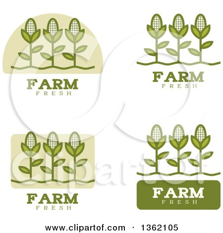 Clipart of Green Farm Fresh Corn Icons - Royalty Free Vector Illustration by Cory Thoman