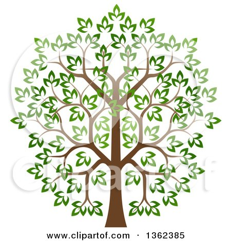 Clipart of a Lush Tree with a Brown Trunk and Green Leaves - Royalty Free Vector Illustration by AtStockIllustration
