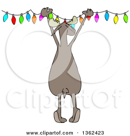 Clipart of a Cartoon Rear View of a Festive Moose Hanging Christmas Lights - Royalty Free Vector Illustration by djart